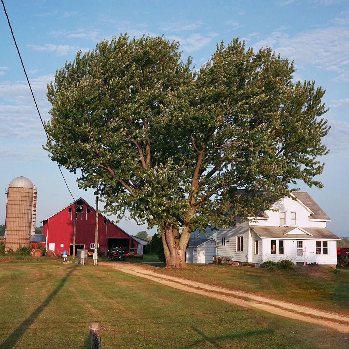 farm program post blog