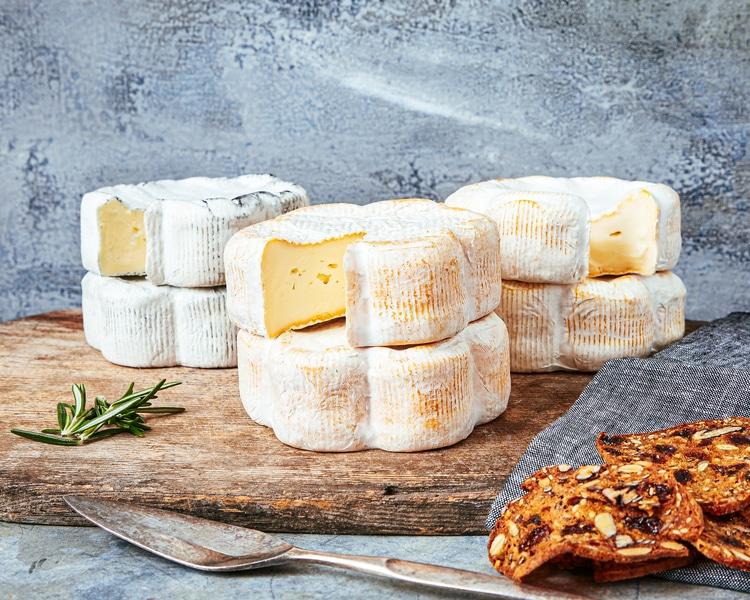 Dorothys cheese bundle